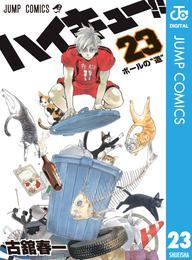 ハイキュー!! 23 漫画