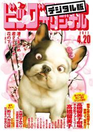 ビッグコミックオリジナル 2017年8号(2017年4月5日発売) 漫画