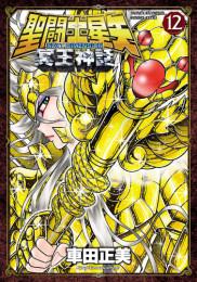 聖闘士星矢 NEXT DIMENSION 冥王神話 10 冊セット最新刊まで 漫画