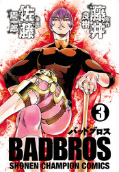 BADBROS 3 冊セット全巻 漫画