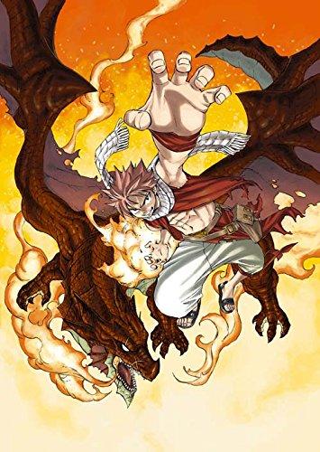 FAIRY TAIL(59) DVD付き特装版 漫画