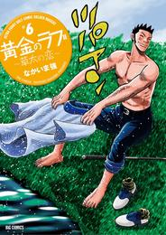 黄金のラフ2~草太の恋~(6) 漫画