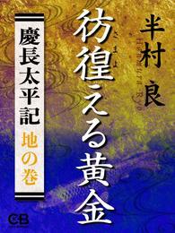 彷徨える黄金〈地の巻〉慶長太平記