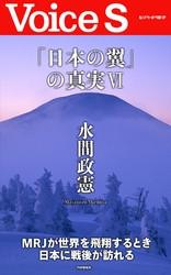 「日本の翼」の真実 【Voice S】 漫画