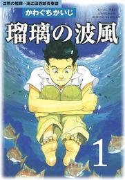 瑠璃の波風(1) 漫画