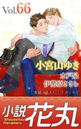 小説花丸 37 冊セット最新刊まで 漫画