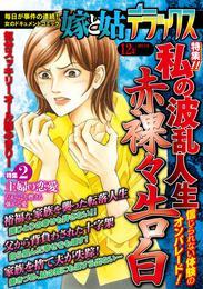 嫁と姑デラックス 2012年12月号 漫画