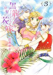 黒龍さまの見習い花嫁 3