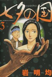 七夕の国(3) 漫画