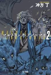 マルドゥック・アノニマス 2 漫画