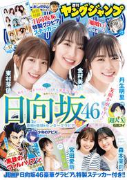 ヤングジャンプ 12 冊セット 最新刊まで