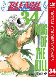 BLEACH カラー版 34 漫画