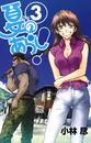 夏のあらし!3巻 漫画