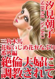 三角木馬 花嫁いじめ花弁なぶり(改訂版) 13 冊セット最新刊まで 漫画