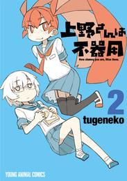 上野さんは不器用 2巻 漫画