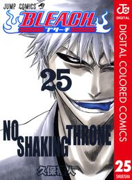 BLEACH カラー版 25 漫画