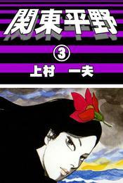 関東平野 (3) 漫画