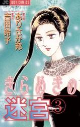 きらめきの迷宮 3 冊セット全巻 漫画