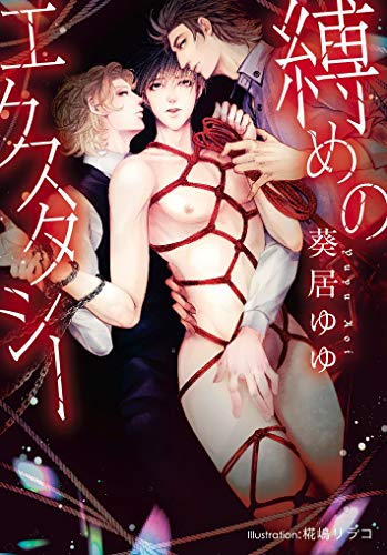 【ライトノベル】縛めのエクスタシー (全1冊)
