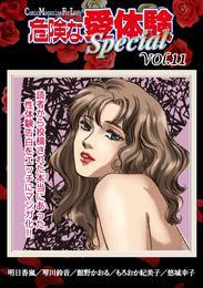危険な愛体験special 11 漫画