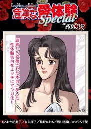 危険な愛体験special 13 漫画
