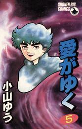 愛がゆく(5) 漫画