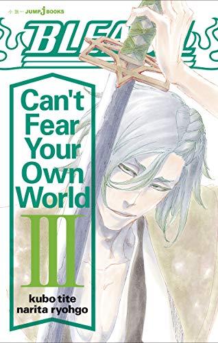【ライトノベル】BLEACH Can't Fear Your Own World 漫画