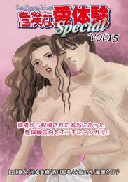 危険な愛体験special 15 漫画