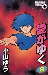 愛がゆく(9) 漫画