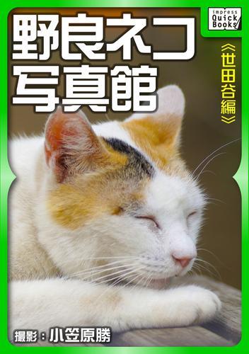 野良ネコ写真館【世田谷編】 漫画