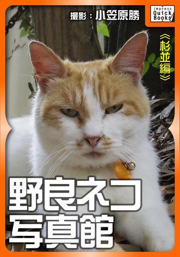 野良ネコ写真館【杉並編】 漫画