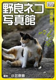 野良ネコ写真館【湾岸編】 漫画