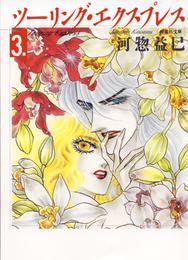 ツーリング・エクスプレス 3巻 漫画