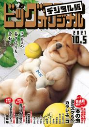 ビッグコミックオリジナル 2021年19号(2021年9月18日発売)