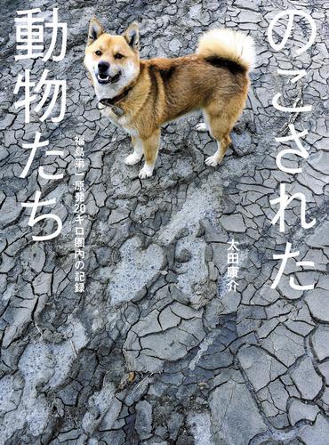 のこされた動物たち――福島第一原発20キロ圏内の記録 漫画