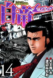 白竜-LEGEND- 14 漫画