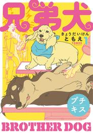 兄弟犬 プチキス(1) 漫画