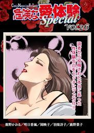 危険な愛体験special 26 漫画