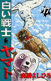 白い戦士ヤマト 第17巻 漫画