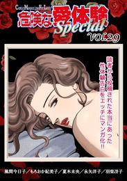 危険な愛体験special 29 漫画