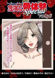 危険な愛体験special 36 漫画