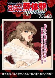 危険な愛体験special 43 漫画
