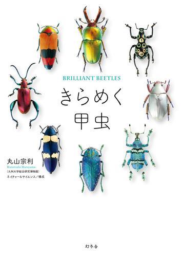 きらめく甲虫 漫画