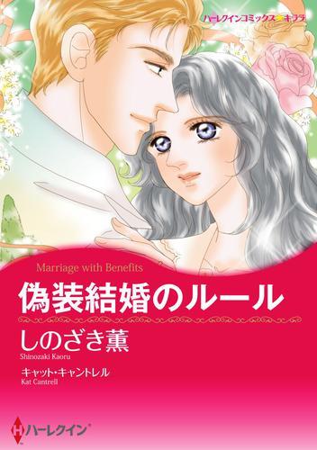 偽装結婚 テーマセット vol. 漫画