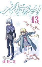 ハヤテのごとく!(43) 漫画