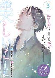 美しいこと プチキス(3)