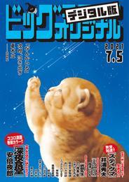 ビッグコミックオリジナル 12 冊セット 最新刊まで