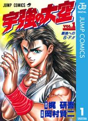 宇強の大空 13 冊セット全巻 漫画