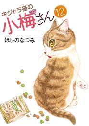キジトラ猫の小梅さん(12) 漫画