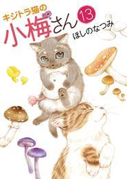 キジトラ猫の小梅さん(13) 漫画